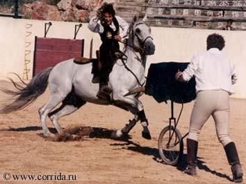 Лидия Артамонт и Faz de Conta на тренировке