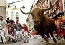 Бег быков