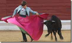 APTOPIX FRANCE BULLFIGHT